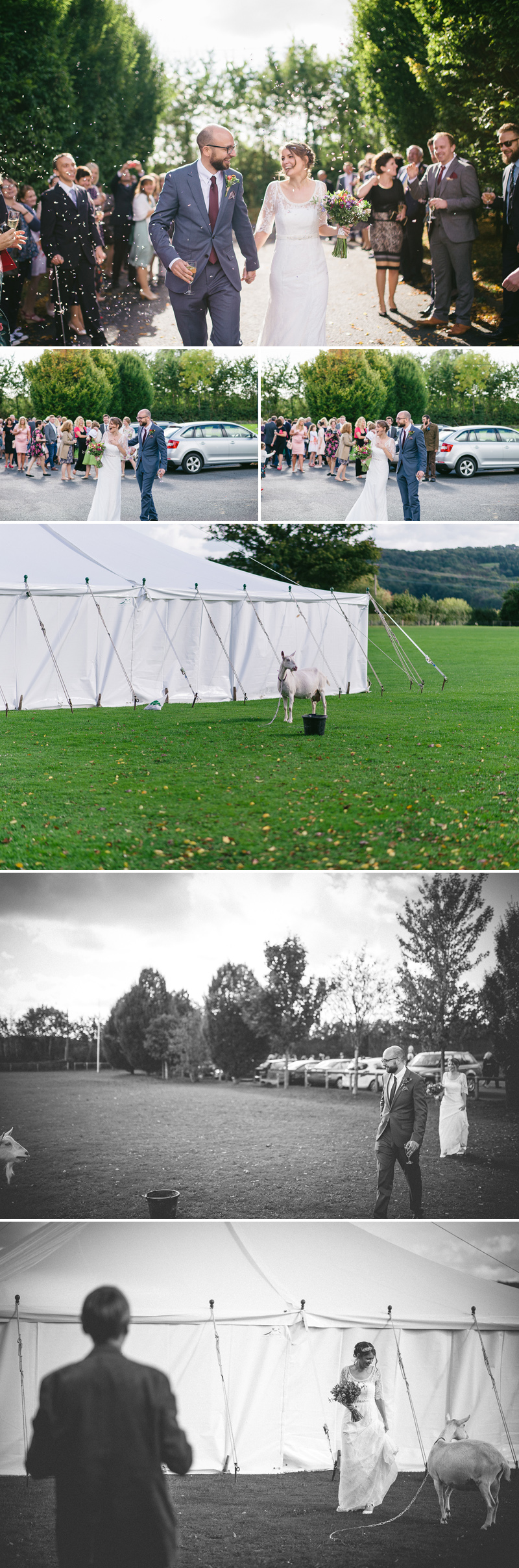 marquee wedding hereford