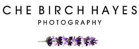 Herefordshire Wedding Photographer : Che Birch-Hayes Photography